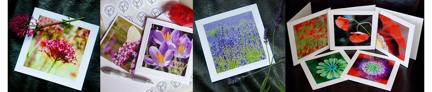 A selection of photos showing examples of greetings cards made by Jane Mucklow Photography, including poppy, lavender, and mother's day cards