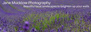 Jane Mucklow Photography header image for landscape photos