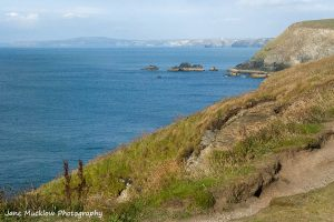 View looking north along the coastline from Godrevy towards Porthtowan by Jane Mucklow Photography