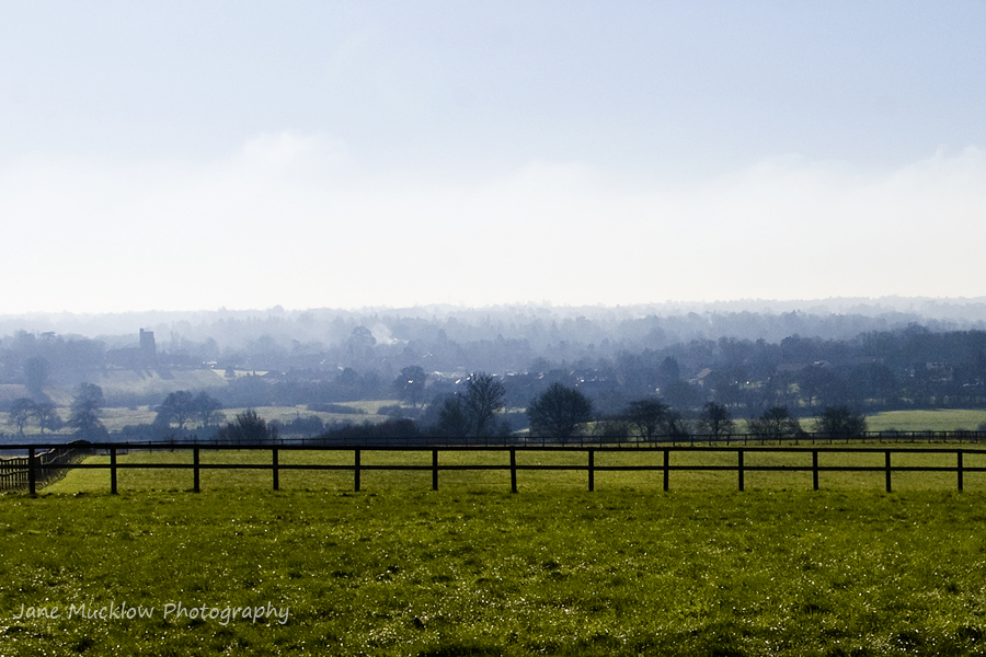 View across dewy and misty fields and trees, green grass and blue sky, photo by Jane Mucklow Photography