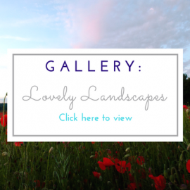Gallery for Lovely Landscapes page image