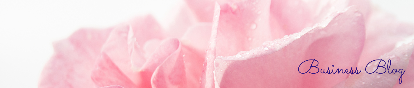pink rose detail, business blog page header by Jane Mucklow