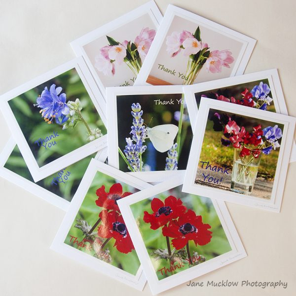 collection of ten thank you cards of flower photographs by Jane Mucklow Photography