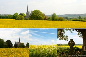 Montage of photographs of Barming church across the rape field for May in the Colours of Kent 2019 Calendar by Jane Mucklow Photography