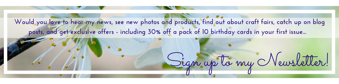 Newsletter sign up image for Jane Mucklow Photography