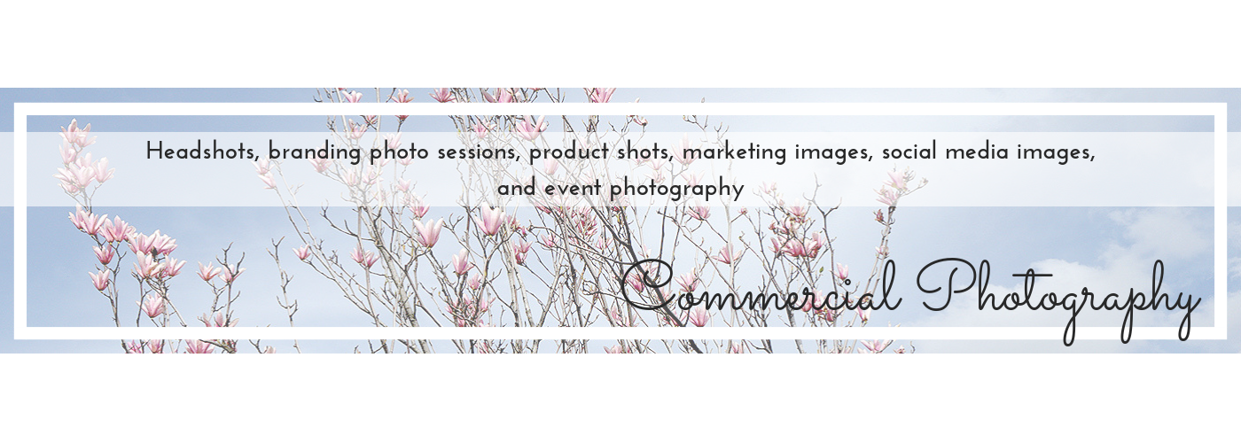 Pink magnolia blossom on blue sky, commercial page header image for home page, by Jane Mucklow