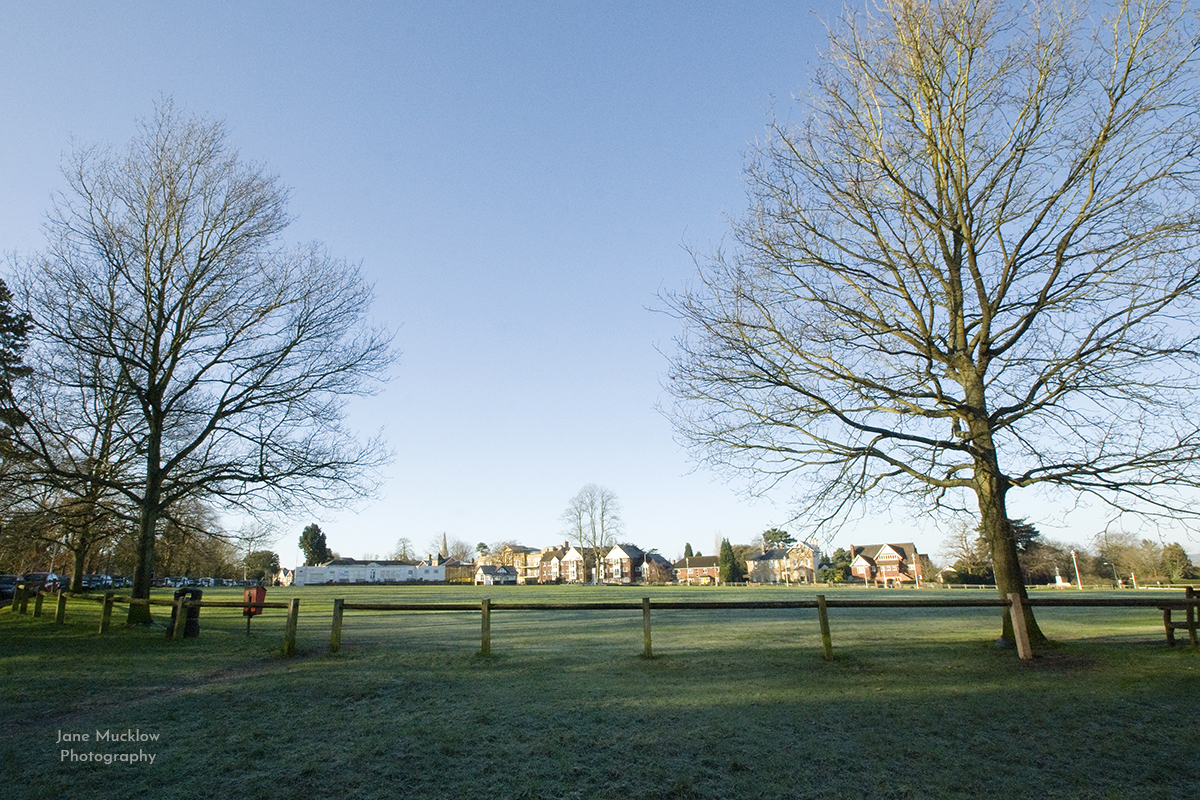 Photograph of a frosty morning view across the Vine, Sevenoaks, by Jane Mucklow