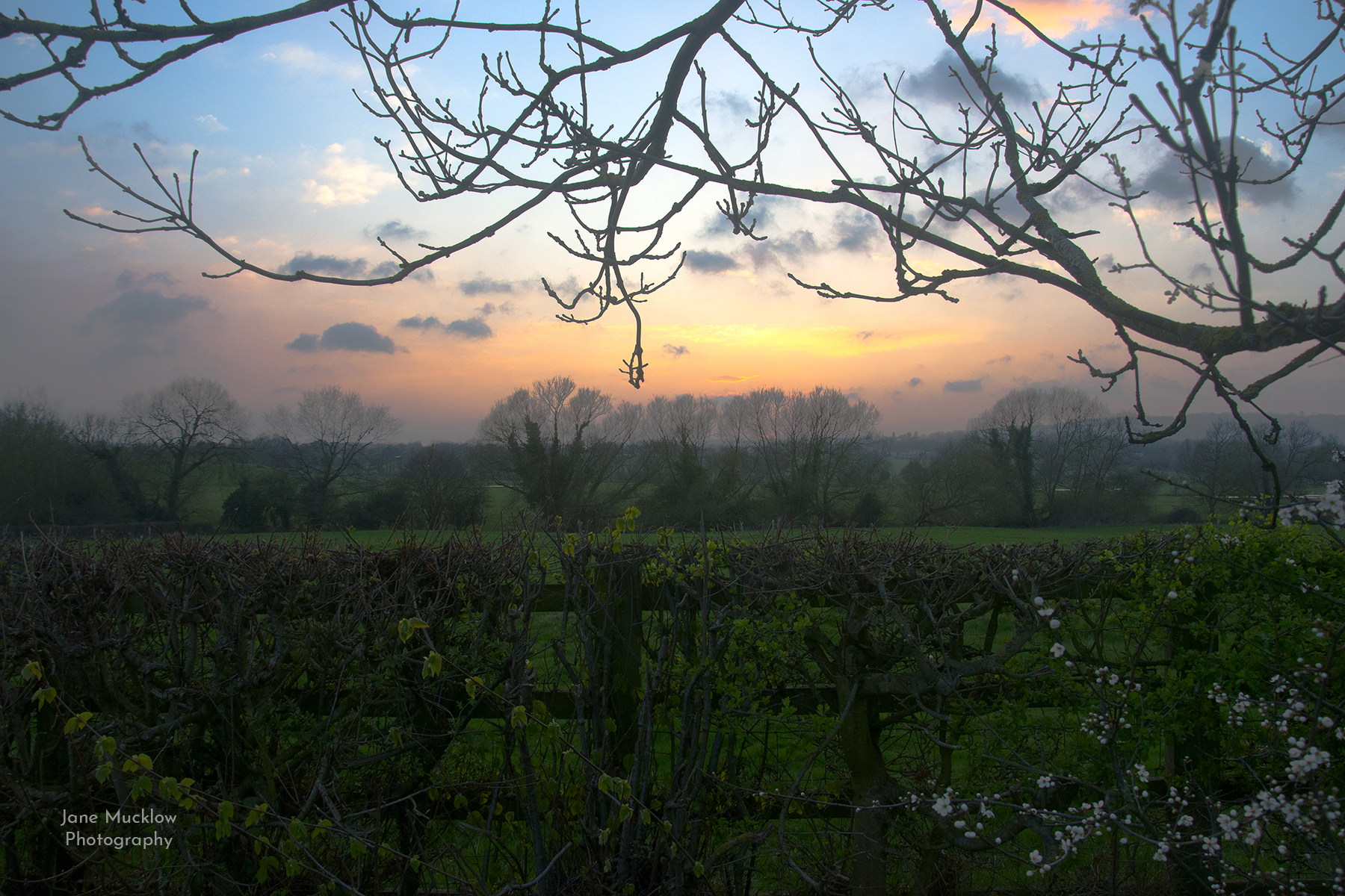 Photograph of sunset, fields near Sevenoaks, by Jane Mucklow