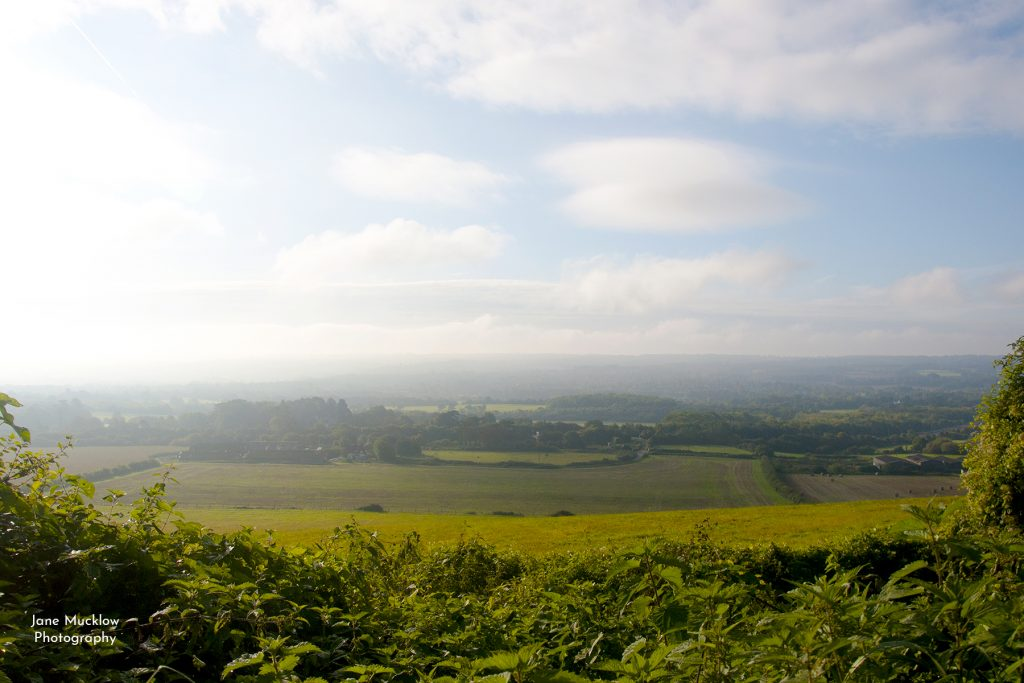 Photograph of a misty morning view over Sevenoaks, by Jane Mucklow