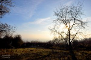Photograph of the view from One Tree Hill, near Sevenoaks, by Jane Mucklow