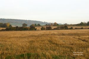 Autumn field view to Shoreham Cross from Otford, photograph by Jane Mucklow