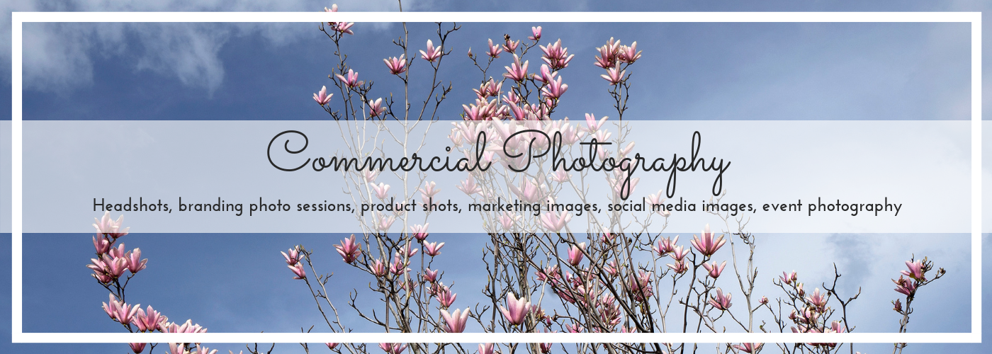 Commercial photography banner for homepage, magnolia photo by Jane Mucklow