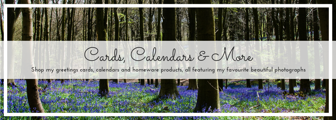 Products shop banner for home page, bluebells photo by Jane Mucklow