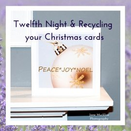 Twelfth Night, and Recycling your Christmas Cards