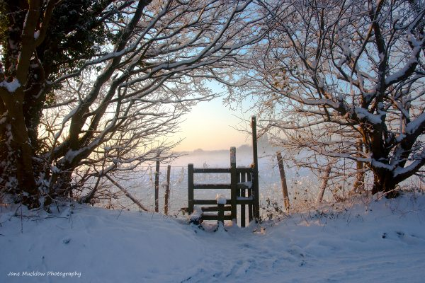 Photograph by Jane Mucklow of a snowy sunrise and style