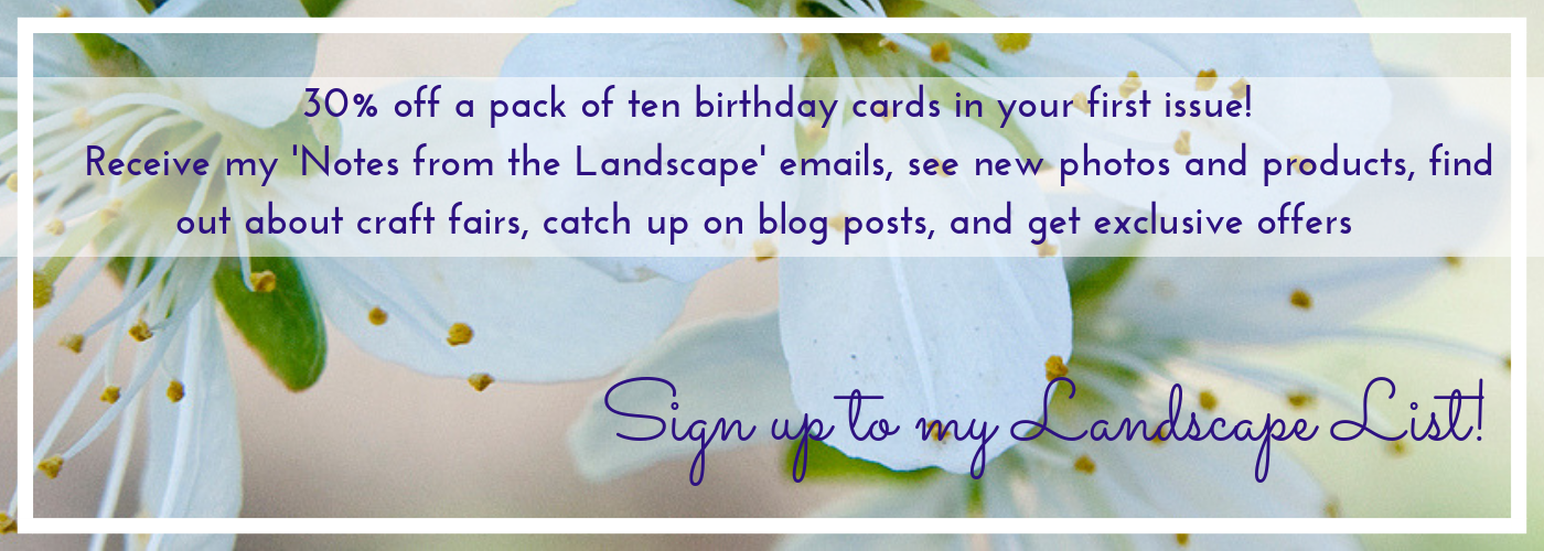 Landscapes newsletter banner image for Jane Mucklow Photography