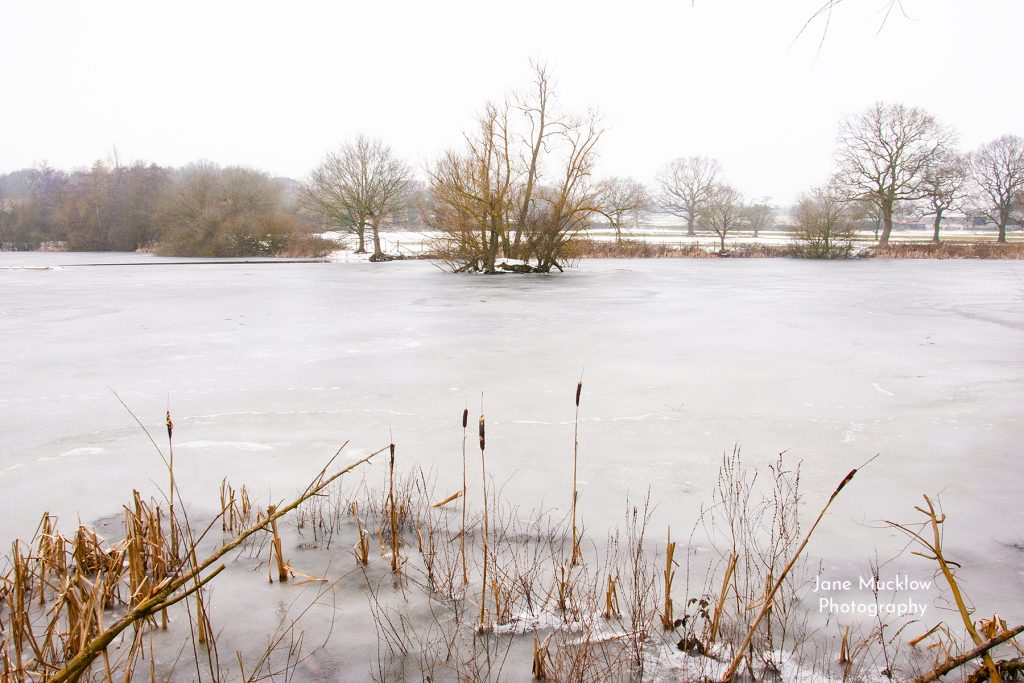 Photo of an icy lake at Sevenoaks Wildlife Reserve in the snow, by Jane Mucklow