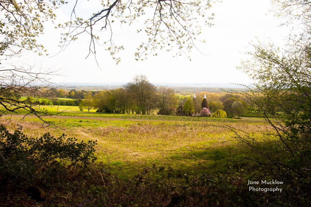 Photo of a Spring view to Tonbridge from Ightham Mote woods, by Jane Mucklow