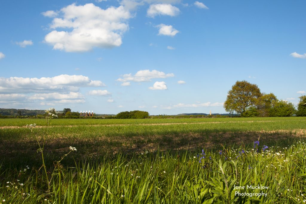 Photo of a Spring view across the fields towards Hadlow, by Jane Mucklow