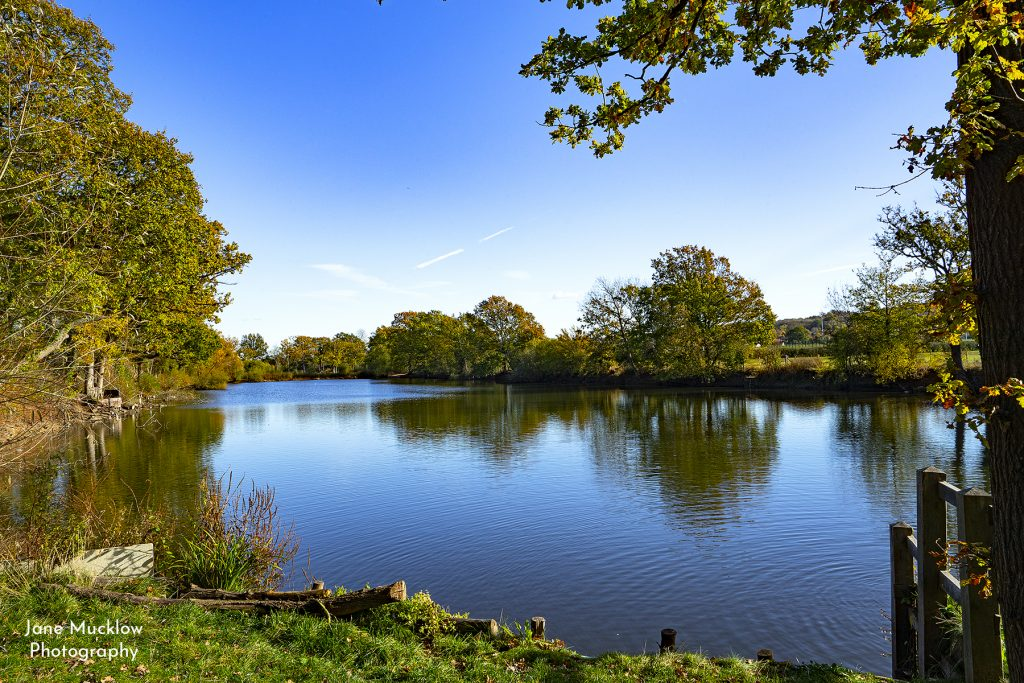 Photo of Little Barden Lake, Autumn, by Jane Mucklow