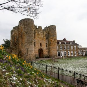 Photo of Tonbridge Castle and daffodils in the snow by Jane Mucklow