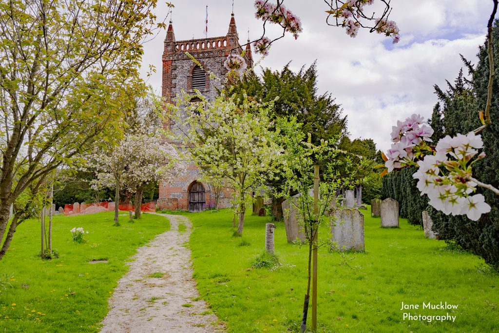 Photo of Shoreham Church with Spring blossom, by Jane Mucklow