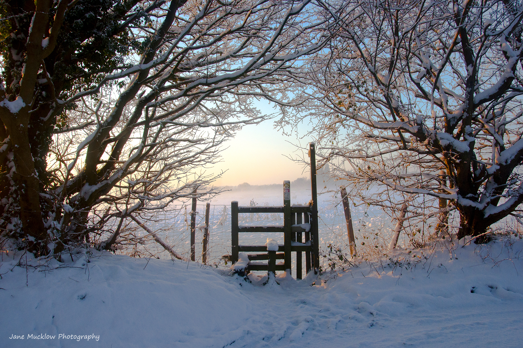 Photo of a snowy sunrise and style, Otford, by Jane Mucklow