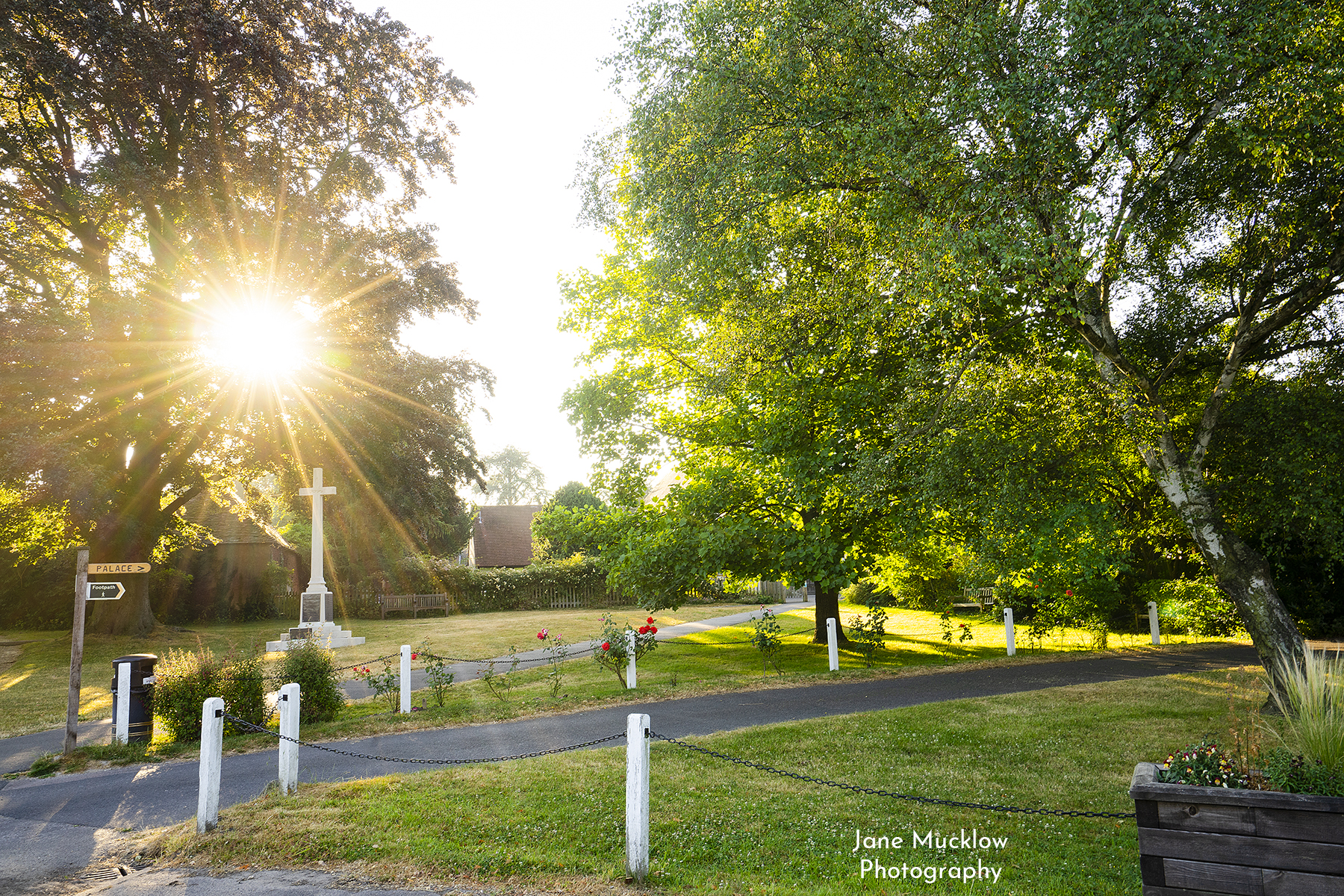 Photo of a summer sunrise at the church green and war memorial, by Jane Mucklow