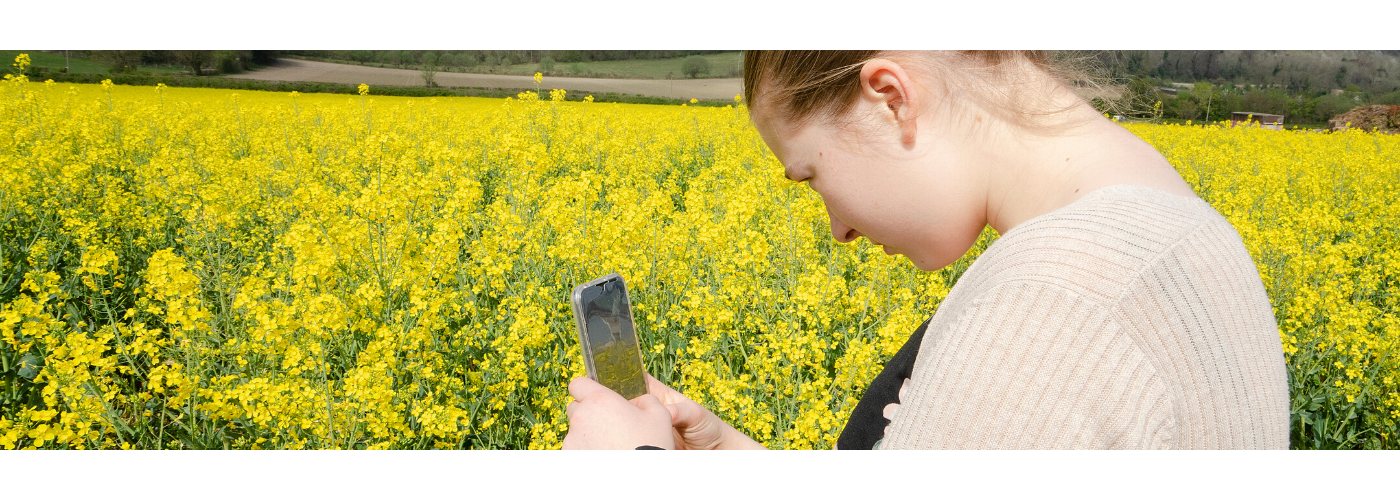 Photo of a girl taking a photo in a rapefield by Jane Mucklow Photography for blog on how to get children interested in photography