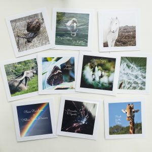 Photo of ten greetings cards by Jane Mucklow Photography in the Uplifting card collection.