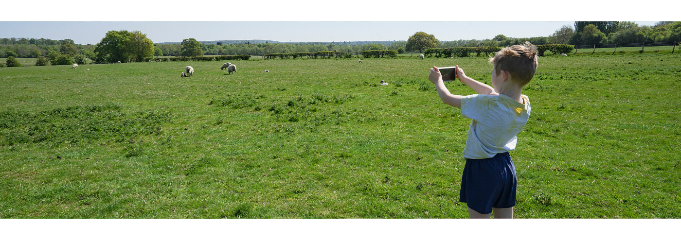 Photograph of a boy taking a photo in a sheep field, by Jane Mucklow Photography