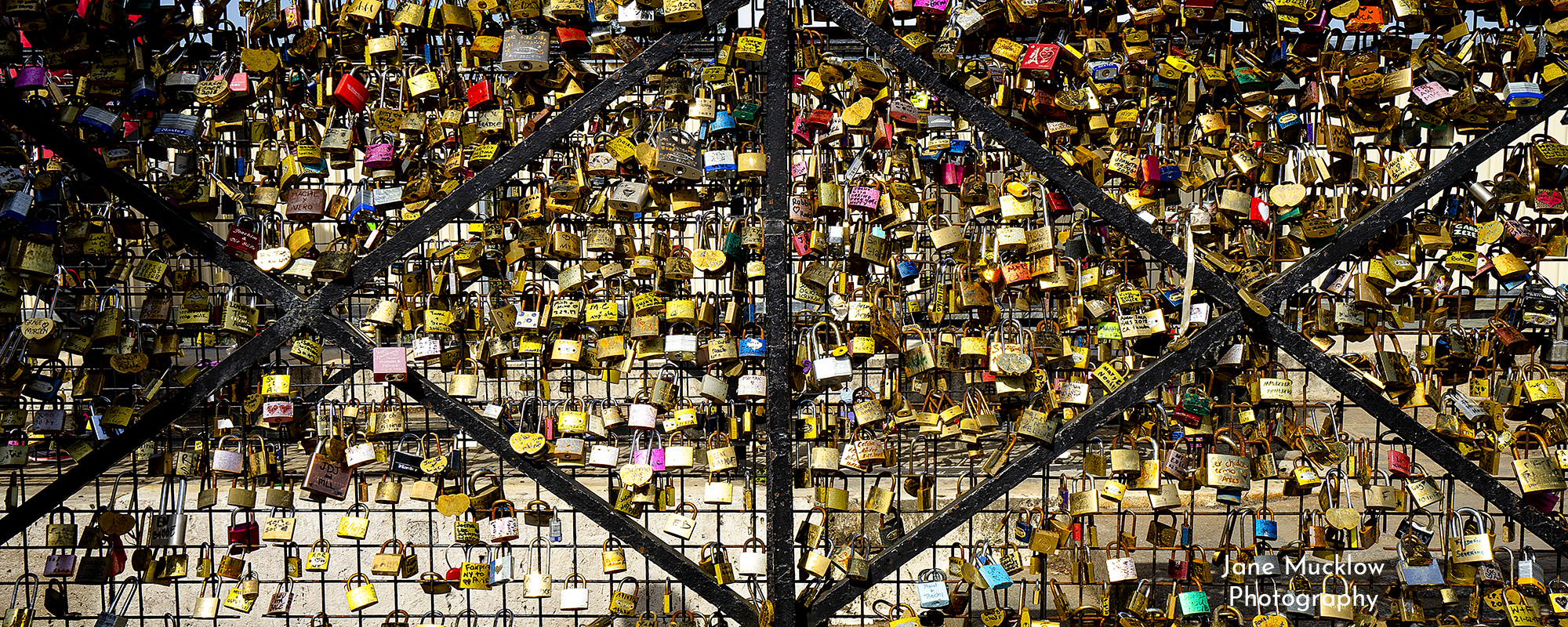 Photo by Jane Mucklow of lovelocks on a bridge in Paris, available as a canvas for your wall.