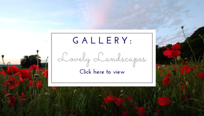 Photo by Jane Mucklow of a sunset over a field of poppies, website page button for the Lovely Landscapes photo gallery