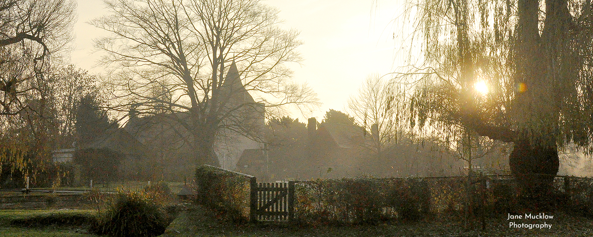 Photo by Jane Mucklow of Otford pond with a winter sunrise, available as a canvas for your wall