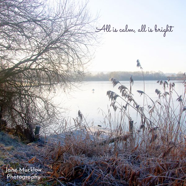 Tonbridge Christmas Card by Jane Mucklow, photo of Haysden Lake, frosty morning