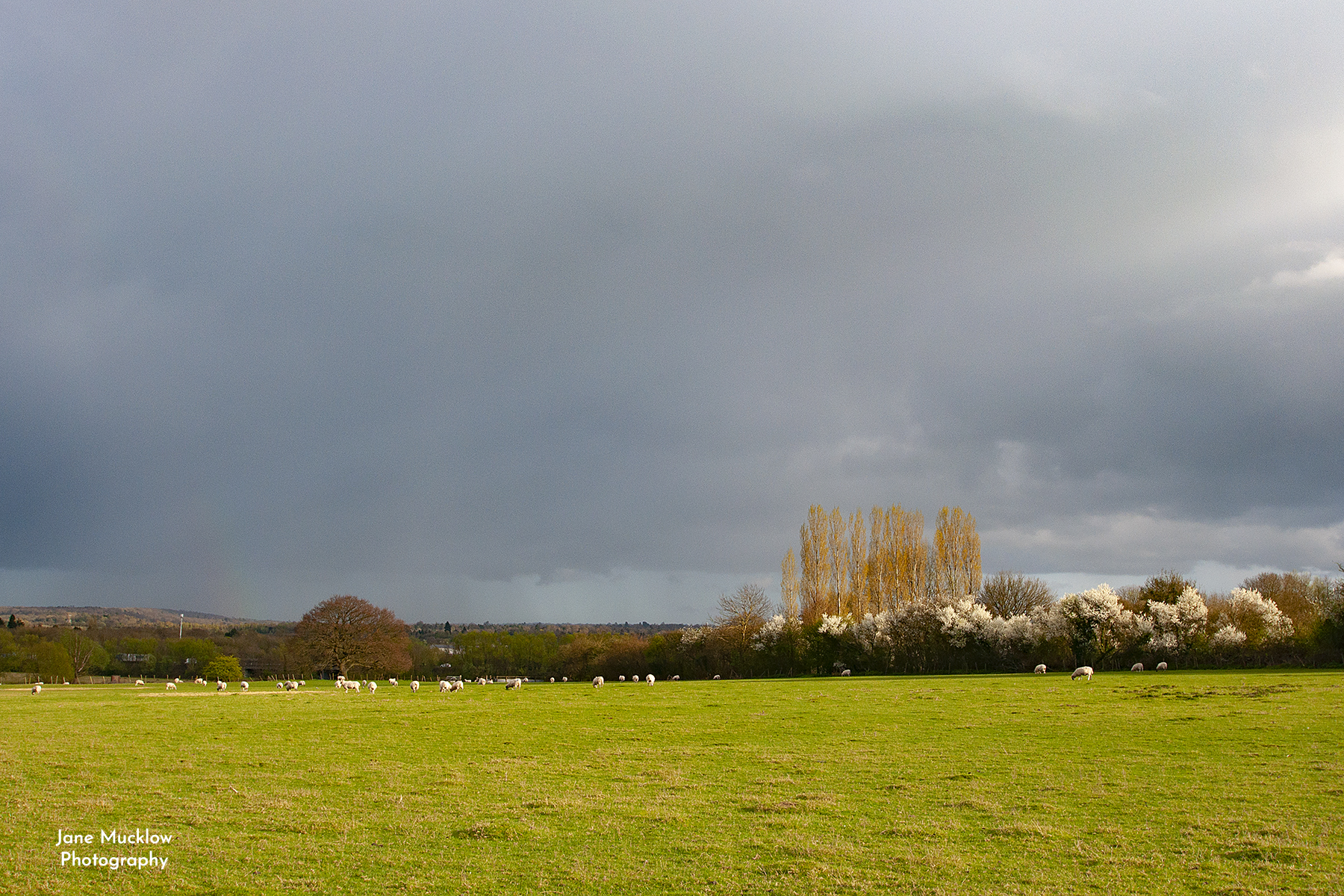 Photo of a stormy sky over Sevenoaks, by Jane Mucklow