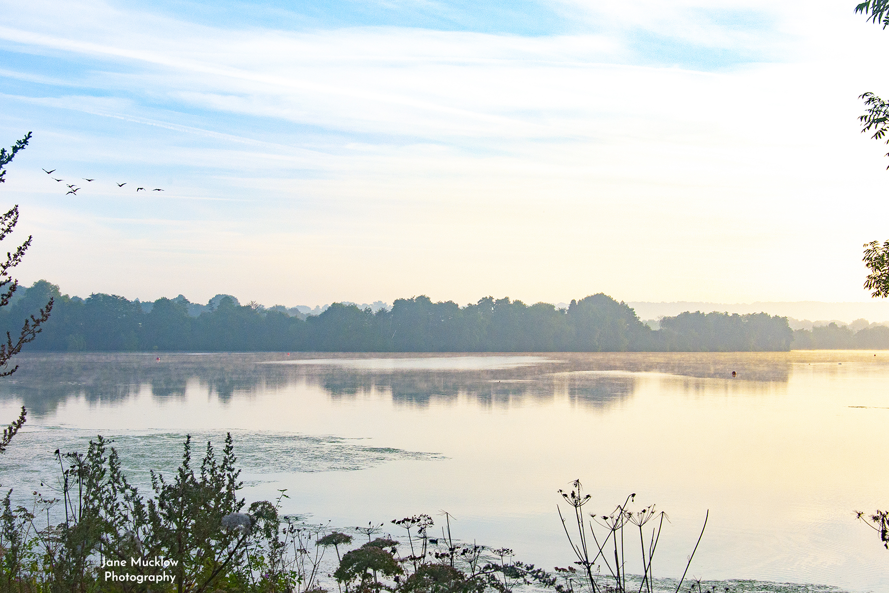 Photo of the sunrise at Chipstead Lake, Sevenoaks, by Jane Mucklow