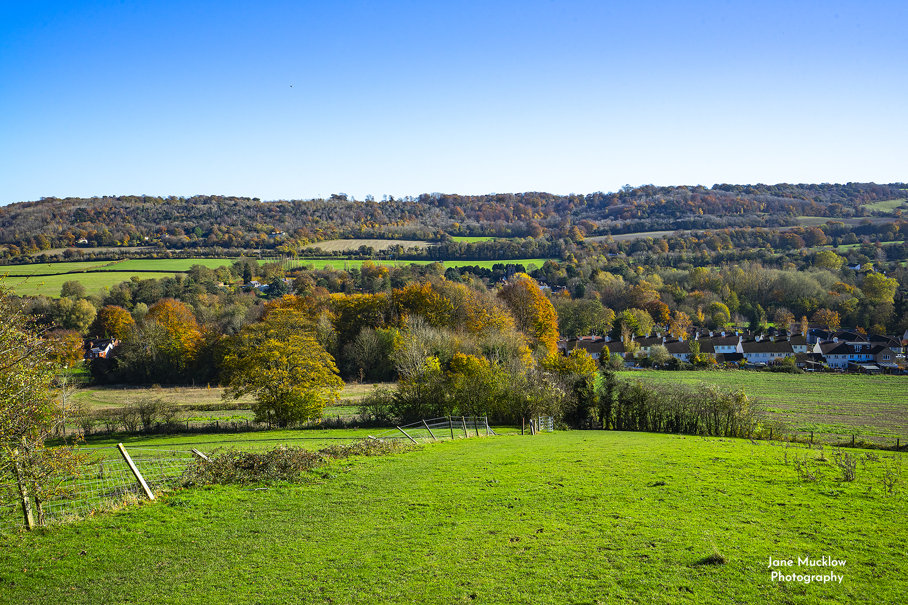 Photo of the view across Shoreham from Meenfield Wood, by Jane Mucklow