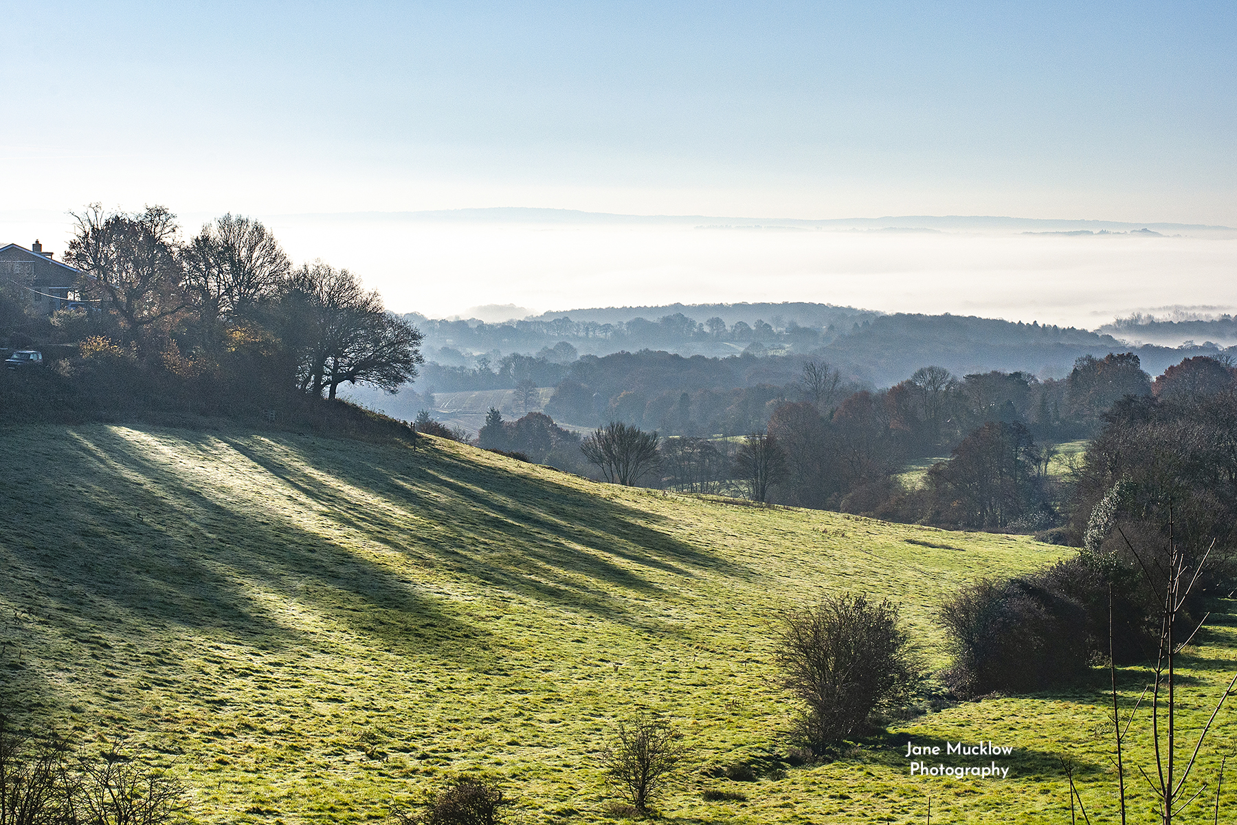 Photo of the misty sunrise view from Ide Hill towards Bough Beech and Tunbridge Wells, by Jane Mucklow