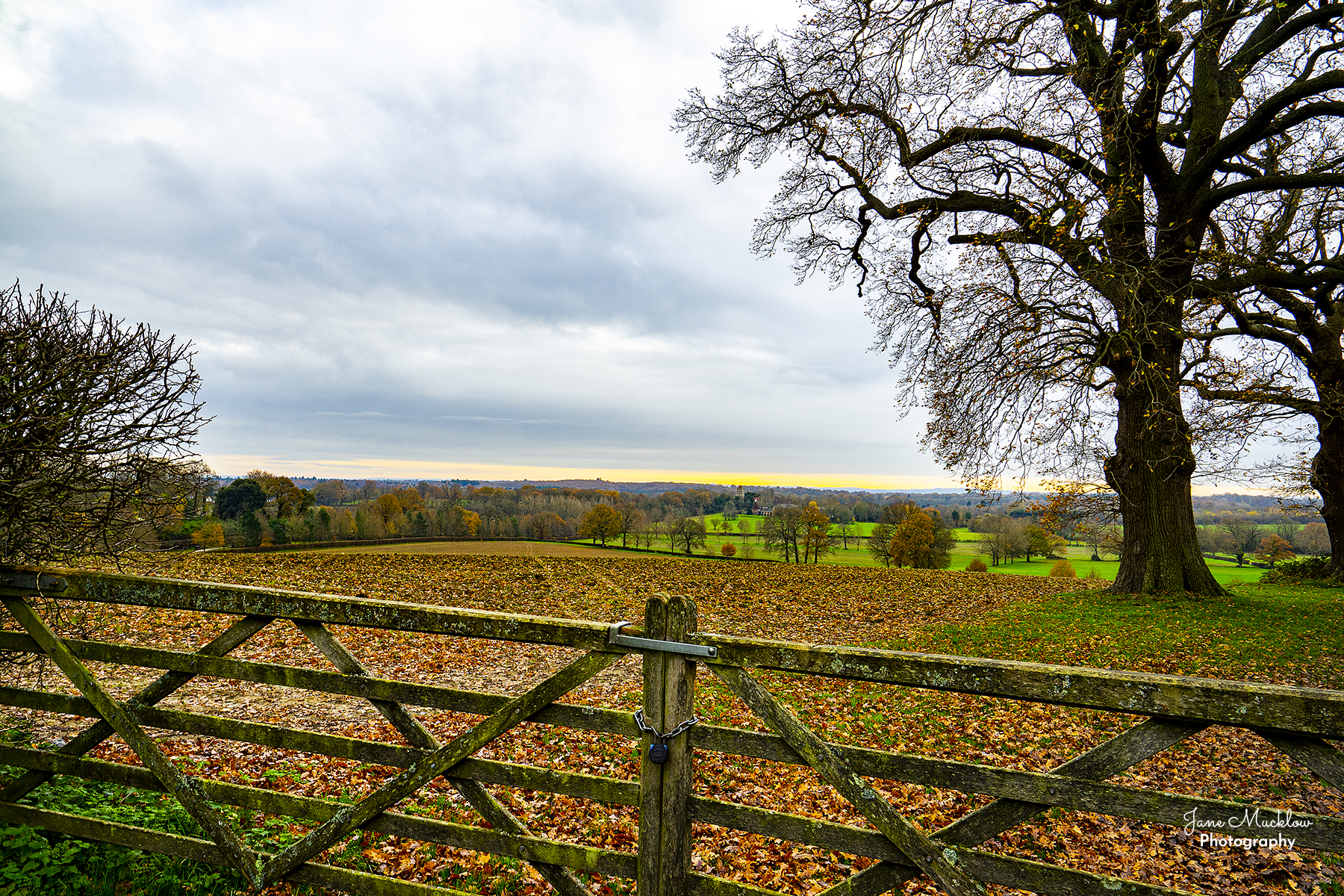 Photo of an Autumn view across Shipbourne to Tonbridge, by Jane Mucklow
