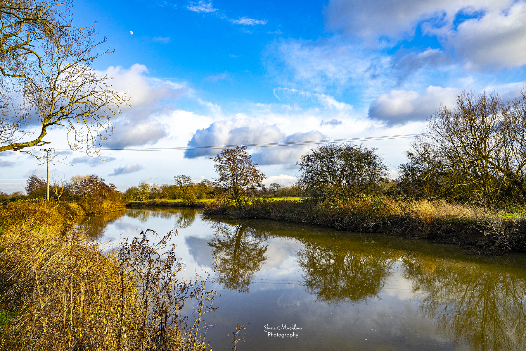Photo of winter reflections in the river Medway near Tonbridge, by Jane Mucklow