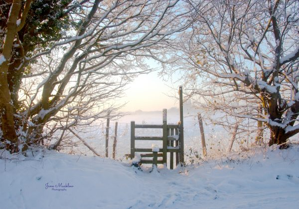 Jane Mucklow Photography - photo of snowy style at sunrise