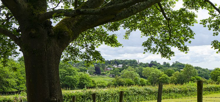 Photo of Ide Hill church and village from Emmetts driveway, by Jane Mucklow