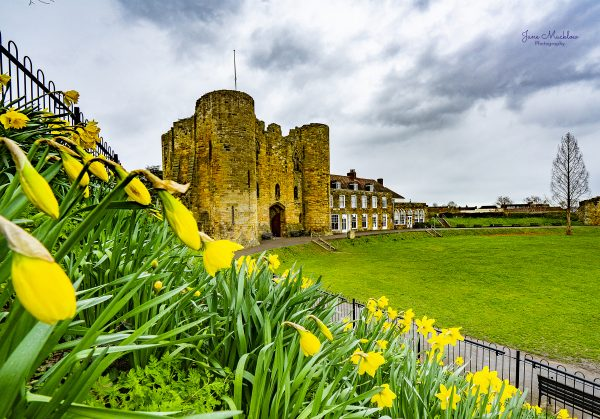 Photo of Tonbridge Castle, Daffodils & Clouds, by Jane Mucklow Photography